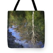 Impressionist Reflections Tote Bag