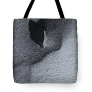 Impressions In The Sand Tote Bag