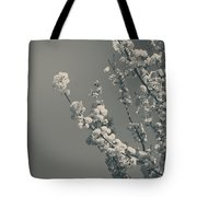 In A Beautiful World Tote Bag