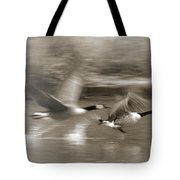 In A Blur Of Feathers Tote Bag