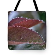In A Row With Verse Tote Bag