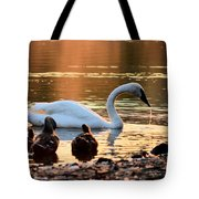 In A Stream Of Golden Light Tote Bag