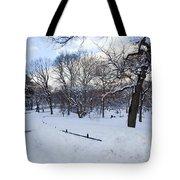 In Central Park Tote Bag