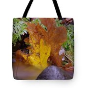 In Eveything Beauty Abides Tote Bag