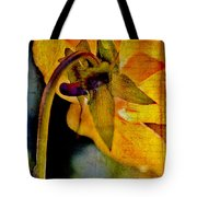In Grandmother's Memory Book Tote Bag