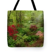 In My Dreams Tote Bag