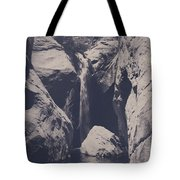 In My Lifetime Tote Bag by Laurie Search