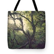 In Our Own Little Magical World Tote Bag
