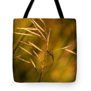 In Praise Of Grass 3 Tote Bag