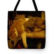 In Repose Tote Bag