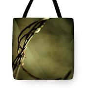 In Shadows And Light Tote Bag