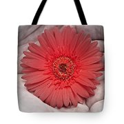 In Strong Hands Tote Bag