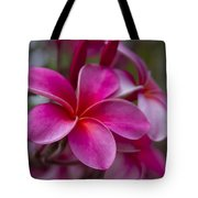 In The Beginning Of Time . . .  Tote Bag