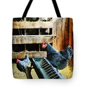 In The Chicken Coop Tote Bag
