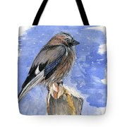 In The Cold Winter Night Tote Bag