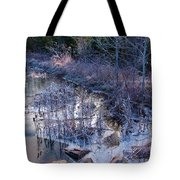 In The Corner Of The Pond Tote Bag