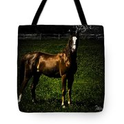 In The Corral 1 - Featured In Comfortable Art And Wildlife Groups Tote Bag