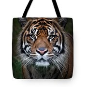 Tiger In Your Face Tote Bag