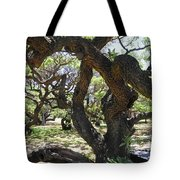 In The Depth Of Enchanting Forest IIi Tote Bag