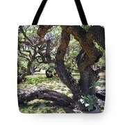 In The Depth Of Enchanting Forest Iv Tote Bag