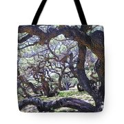 In The Depth Of Enchanting Forest Tote Bag
