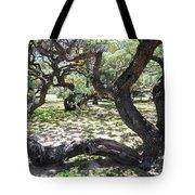 In The Depth Of Enchanting Forest V Tote Bag
