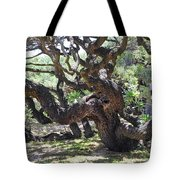 In The Depth Of Enchanting Forest Vi Tote Bag