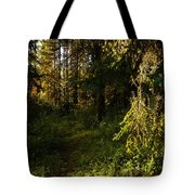 In The Druid Cathedral Tote Bag