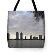 In The Eveninglight Tote Bag