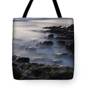 In The Fading Light Tote Bag