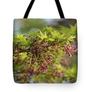 In The First Light Tote Bag