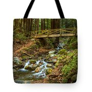 In The Forest - Limekiln State Park In California Tote Bag