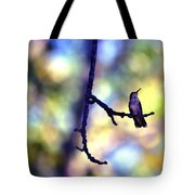 In The Last Of The Light Tote Bag