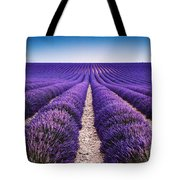 In The Lavender Tote Bag