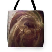 In The Light2 Tote Bag