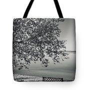 In The Moments When We Breathe Tote Bag