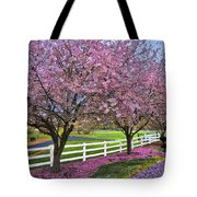 In The Pink Tote Bag by Debra and Dave Vanderlaan