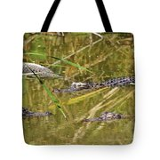 In The Reflection Tote Bag