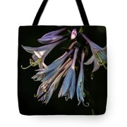 In The Shade Garden Tote Bag