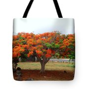 In The Shade Of The Poincianas Tote Bag