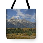 In The Shadow Of The Tetons Tote Bag