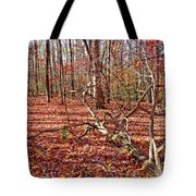 In The Shadows Of Fall 1 Tote Bag