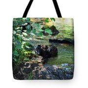 In The Shadows Of The Creek Tote Bag