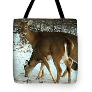 In The Snow At Sunset Tote Bag