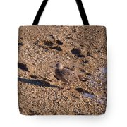 In The Stone Surf Gravel Cape May Nj Tote Bag