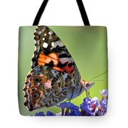 In The Sunlight Tote Bag