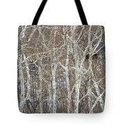 In The Sycamores Tote Bag