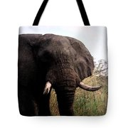 In The Tall Grass Tote Bag