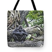In The Treetop Tote Bag