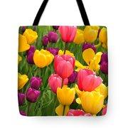 In The Tulip Garden Tote Bag